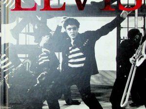 Elvis (Focus on Series)